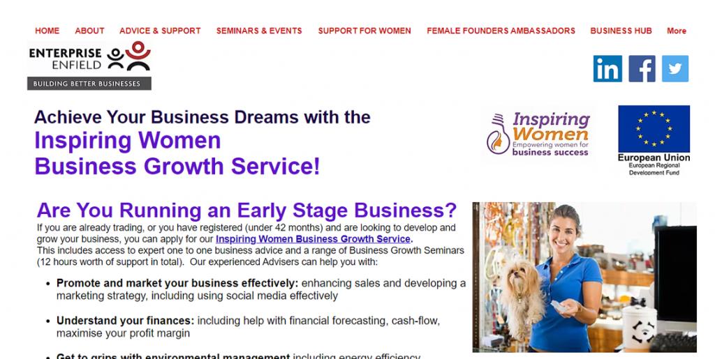 FREE Business Startup Advice Guide Boss Cat Web Design London