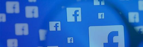 Social Media Boss Cat Web Design London